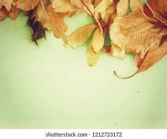 Autumn Leaves with Holly