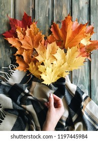 Autumn leaves, hugge, plaid, heart maple