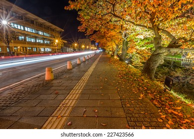 Autumn Leaves light illuminate path at Hirosaki Castle 2
