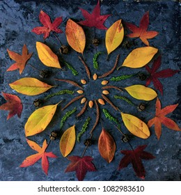 Autumn leaves in mandala shape flat lay on dark background. Natural meditative technic for calm down.
