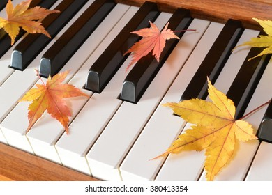 Autumn leaves (maple) and piano