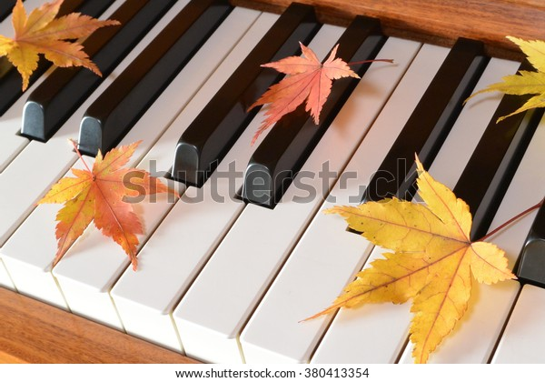 Autumn Leaves Maple Piano Stock Photo (Edit Now) 380413354