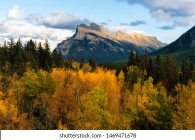 Autumn leaves in Mt Rundle Alberta