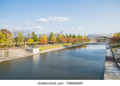 Autumn leaves, Niigata, Japan