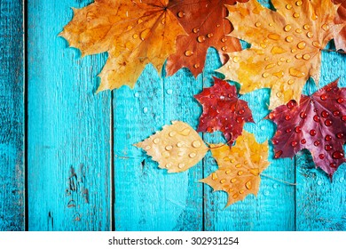 autumn leaves on a beautiful board. wet leaves after a rain. October and November leaves . background for photos . water drops. there is a place for an inscription