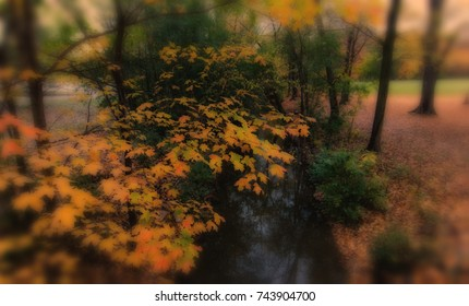 Autumn leaves on a bridge overlooking a stream