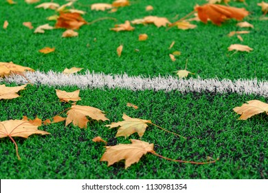 Autumn leaves on football field