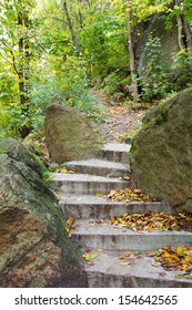Autumn leaves on a stone steps in forest