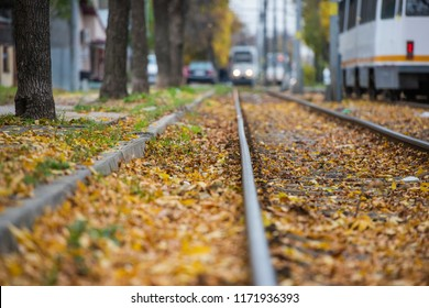 Autumn leaves on a tramway line in Bucharest - autumn scenery