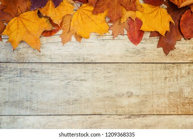 autumn leaves on wooden background. Selective focus. nature