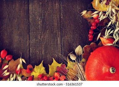 Autumn leaves on wooden background, fall leaf frame with rose hips, red berries and pumpkin, selective focus, toned
