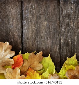 Autumn leaves on wooden background, fall leaf frame