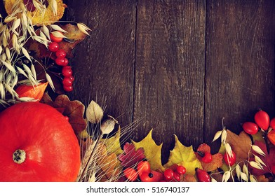 Autumn leaves on wooden background, fall leaf frame with rose hips and red berries, selective focus, toned