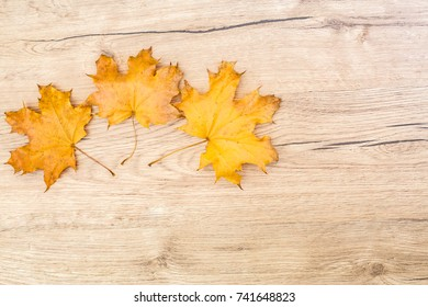 Autumn leaves on wooden background. Autumnal season ornament and design concept with copy space