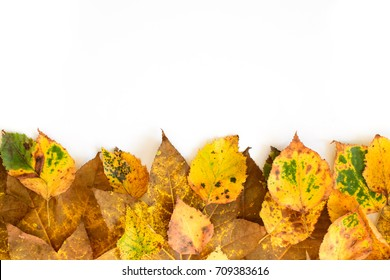 Autumn leaves ornate with white copy space card