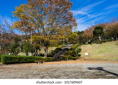 Autumn leaves of a park in Kannami