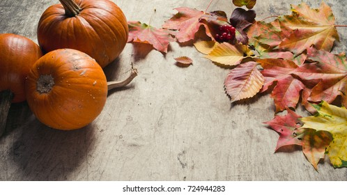 Autumn leaves and pumpkin on a wooden background/Thanksgiving day concept/toned photo