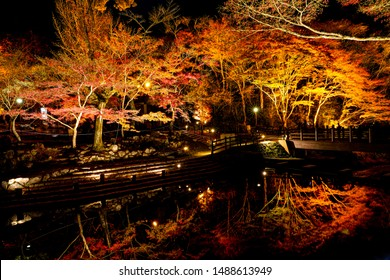 Autumn leaves reflection on the surface of the pond or river are beautiful, the light up of Gyomyo-ga-taki Waterfall and Seto Otaki Waterfall Toppara riverside at night time in Iwayado Park Japan