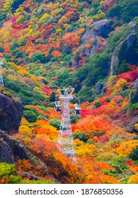 Autumn leaves and ropeway of Kankakei in Shodoshima Island, Kagawa Prefecture, Shikoku, Japan