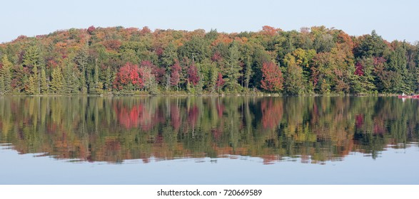 Autumn leaves turning color on northern Ontario's lakes.