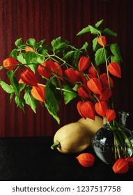 autumn low key of bladder cherries and pumpkin