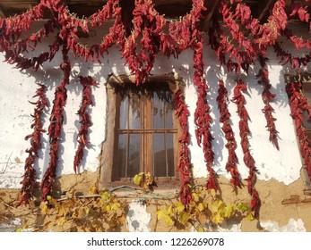 Autumn in Macedonia