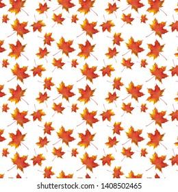 Autumn maple leaf pattern on white background.