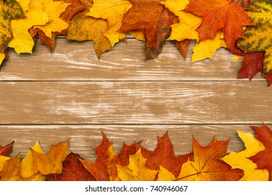 Autumn maple leaves lie on brown wooden background