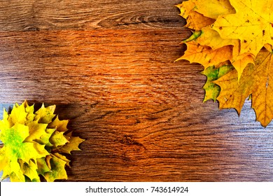 Autumn maple leaves on dark wooden background. Top view with copy space.