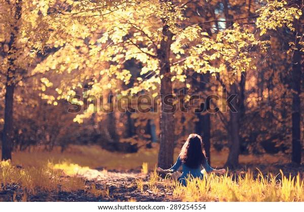 Herbstmeditation Naturwald
