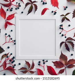 Autumn minimal composition - Vine red and green leaves background. Organic design template. Floral wallpaper. Fall leaves background. Autumn botanical concept. Flat lay. Floral frame design.