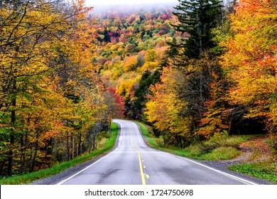 Autumn, Monongahela National Forest, US Route 250, West Virginia, USA
