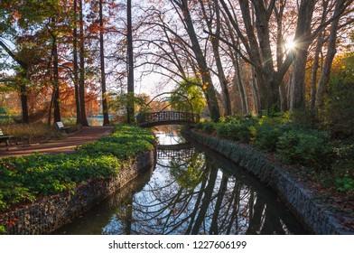 Autumn mood at a small bridge in a park. Parc de la Tete d'Or, Lyon, France.