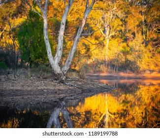 Autumn morning colours in South Australia