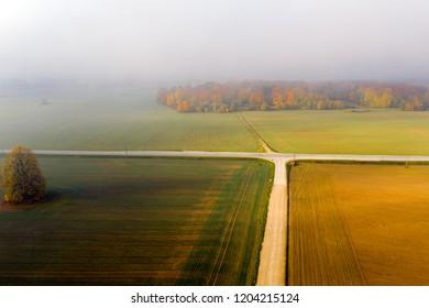 Autumn morning fog on green fields.