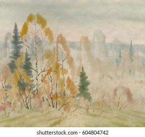 Autumn morning in the forest