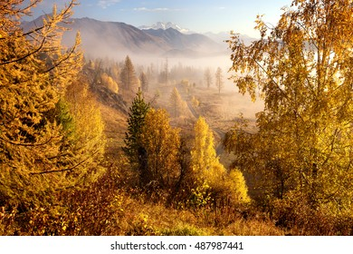 Autumn morning mist at sunrise in Yazev valley with views of Mount Belukha, Altai mountains, Kazakhstan, Central Asia