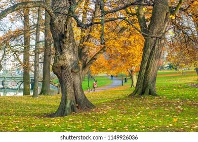 Autumn morning in the park, Gothenburg, Sweden