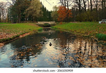 Autumn morning and a walk in the Catherine Park in Tsarskoe Selo - Shutterstock ID 2061050909