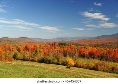 autumn mountain and colorful forest
