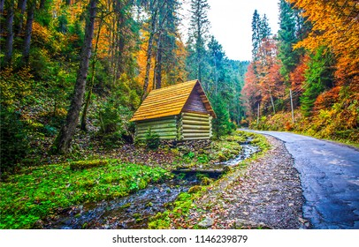 Autumn mountain forest road house landscape. Mountain forest road house in autumn season. Autumn mountain forest road house scene