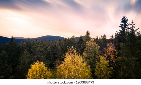 Autumn mountain landscape with mist and trees. Czech Republic, Jeseníky mountains.