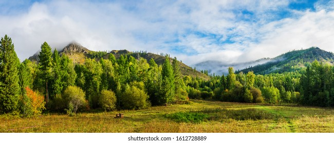 Autumn mountain landscape in Siberia. Yellow and green taiga forest.