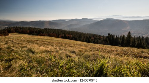 autumn mountain meadow with colorful forest, hills of Beskid Zywiecki, Kysucke Beskydy, Kysucka vrchovina and Tatra mountains and clear sky - Hala Rycerzowa in Beskid Zywiecki mountains in Poland