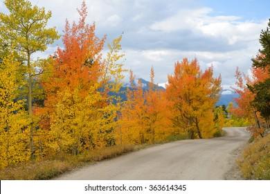 Autumn Mountain Road - Colorful Autumn mountain road -- Boreas Pass, near Breckenridge, Colorado, USA.
