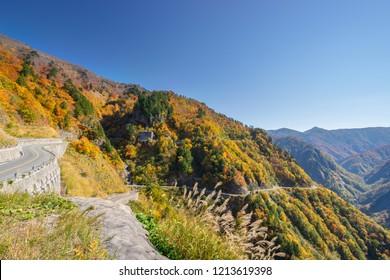 Autumn mountain in Toyoma, Hakusan Shirakawa-go White Road, Japan