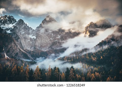 Autumn mountain trees landscape. Mountain tree rocks in autumn. Autumn mountain rocks trees scene
