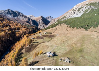 Autumn in mountain, Valley of Federia. Livigno Forest and fields.
