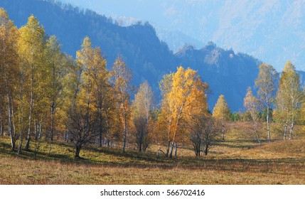 Autumn in the mountains of Altai