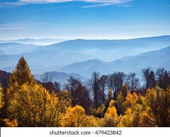 Autumn in mountains. Beskid Sadecki, Poland.